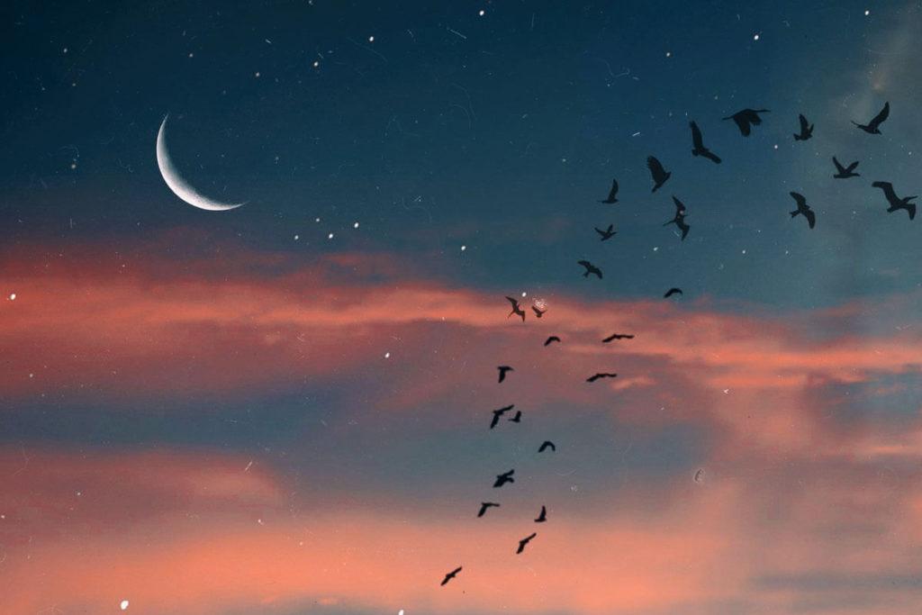 Лунное затмение фото 8