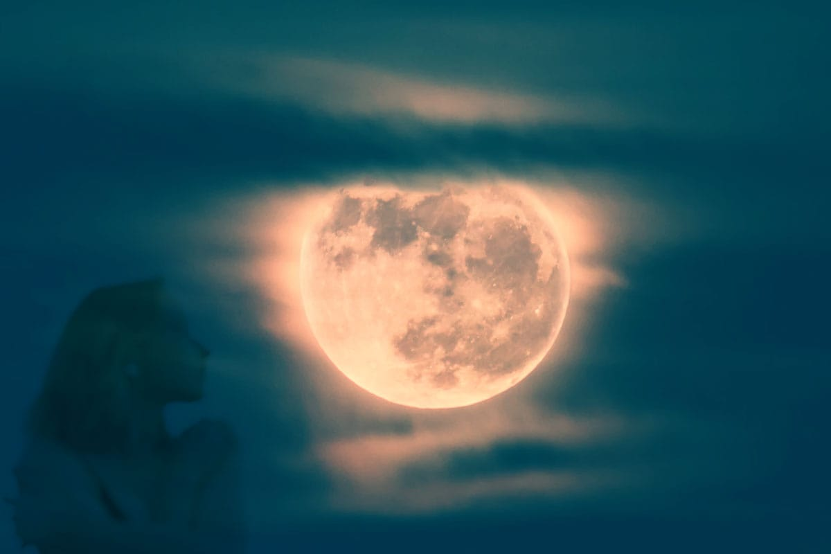 8 лунный день фото 1