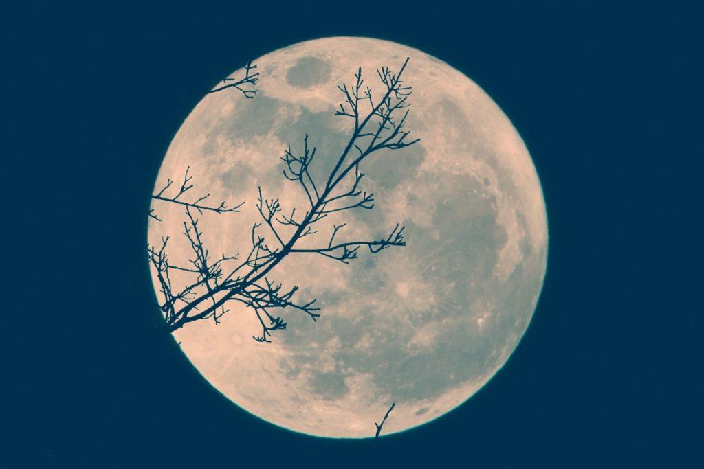 Четвертый лунный день фото 3