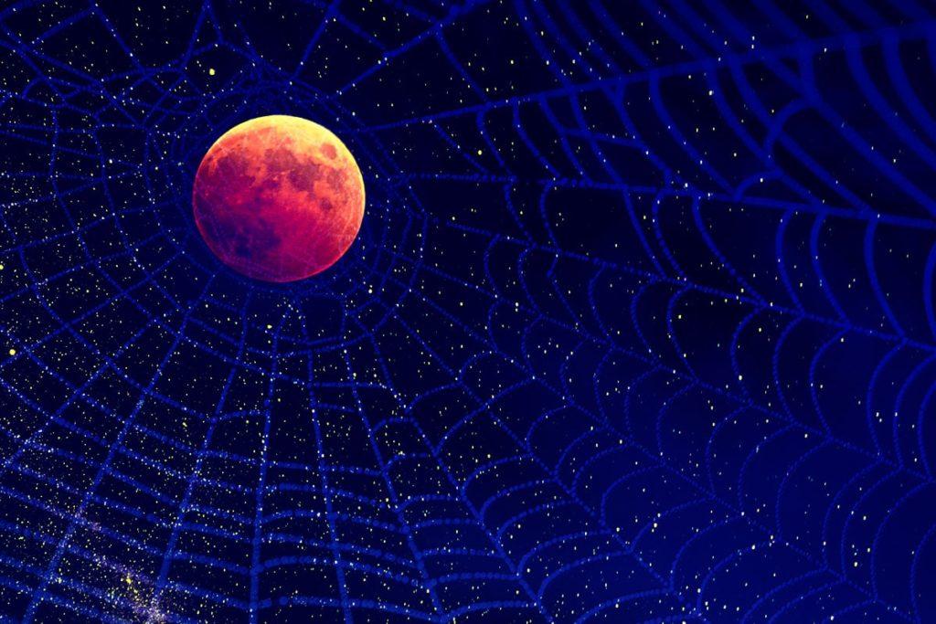 19 лунный день фото 4