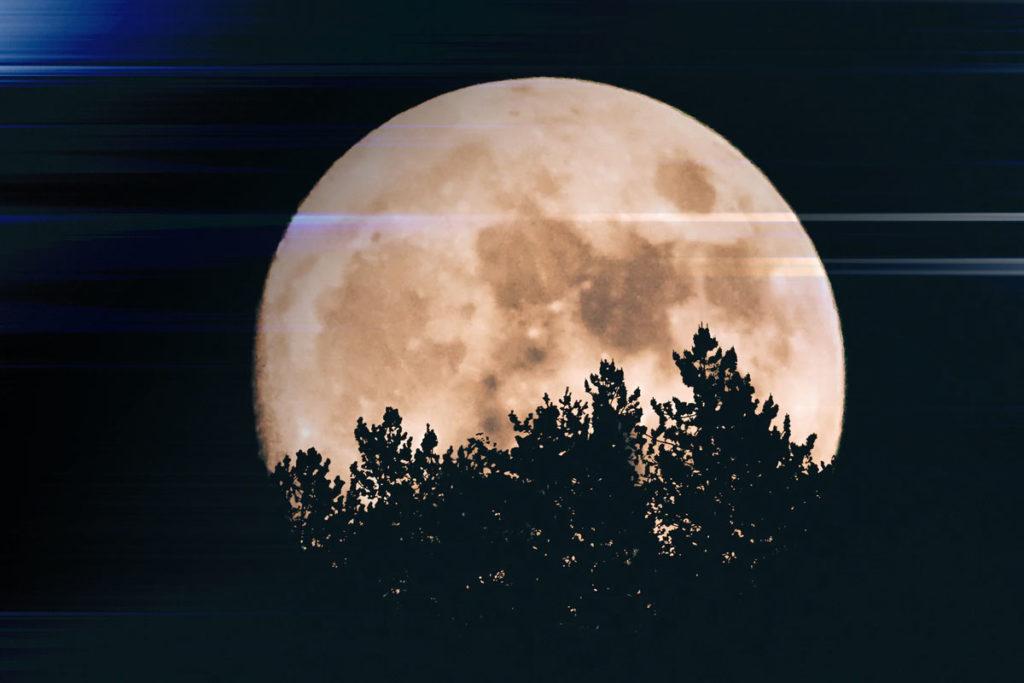 14 лунный день фото 4