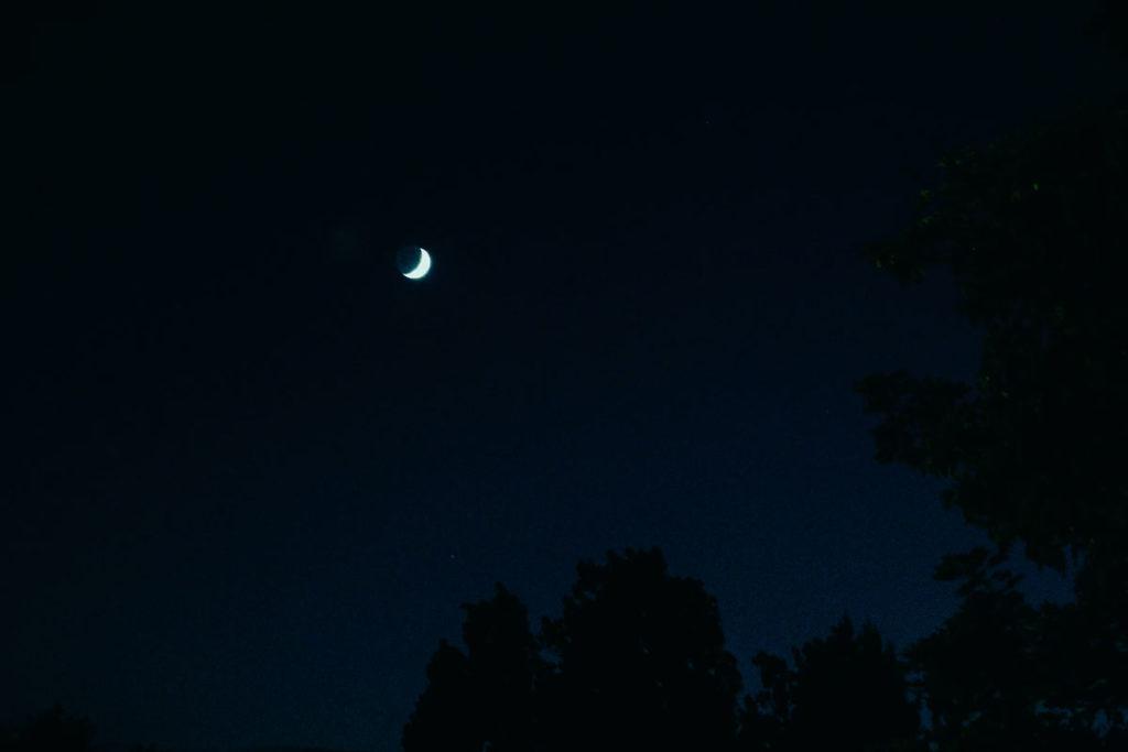 26 лунный день фото 2